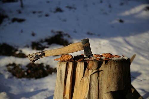 stump-grinding-south-lake-axe-on-a-tree